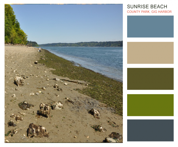Brand color inspiration from Sunrise Beach County Park in Gig Harbor