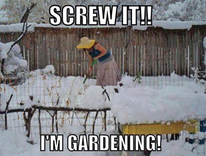 real estate memes gardening winter