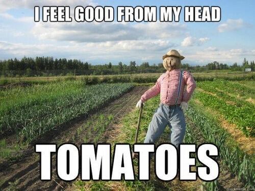 real estate memes gardening