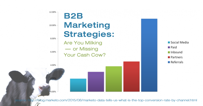 Are Your B2B Marketing Strategies Missing Their Cash Cow?