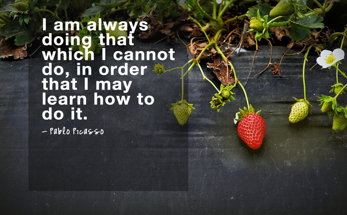 """I am always doing that which I cannot do, in order that I may learn how to do it.""  - Pablo Picasso"