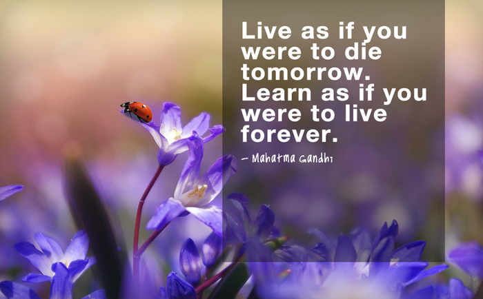 """Live as if you were to die tomorrow. Learn as if you were to live forever.""  - Mahatma Gandhi"