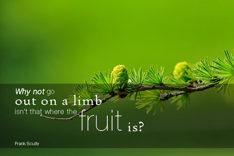 """Why not go out on a limb? Isn't that where the fruit is?"" Frank Scully, American journalist"